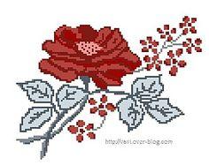 rose-digoin.jpg