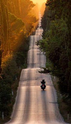 Bolgheri, Tuscany, Italy