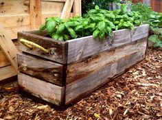 Planter boxes made from recycled pallets and rope.
