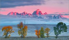 Don Smith Photography - Morning Alpenglow on Teton Peaks, Grand Teton National Park, Wyoming Grand Teton National Park, National Parks, Photo Look, Timeline Photos, Wyoming, World, Gallery, Nature, Pictures