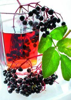 Bezový likér s kávou Fruit, Food, Essen, Meals, Yemek, Eten