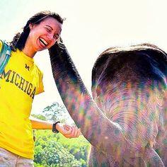 alumnigoblue: What did the elephant say to the Michigan grad?