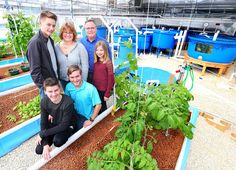 Corn, soybean farm family switches to vegetables, fish with aquaponics system... Tim Goodenough, his wife Bonny and their four children have gotten out of corn and soybean farming and have built their Floating Gardens LLC aquaponics facility. ... #Aquaponics #Hydroponics #Gardening #Design