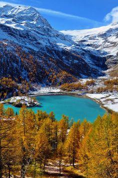 Alp Grum, Canton of Graubunden, Switzerland
