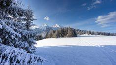 Za stromom Snow, Mountains, Nature, Travel, Outdoor, Outdoors, Naturaleza, Viajes, Destinations