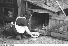 Femme devant un clapier rustique