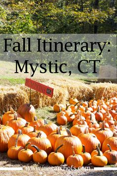 Fall Foodie & Family Day Trip Itinerary For Mystic, Connecticut — In Search Of New England Usa, New England Fall, New England Travel, New London Connecticut, Mystic Connecticut, East Coast Travel, East Coast Road Trip, Great Places To Travel, Places To Go