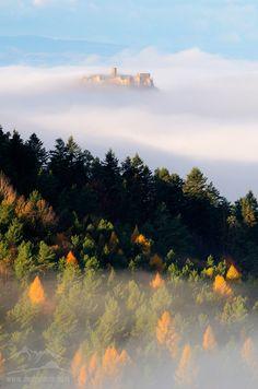 Hidden in the fog / Spis castle #Slovakia