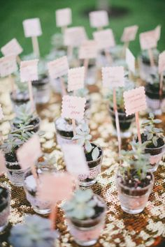 Succulent favors: http://www.stylemepretty.com/california-weddings/sonoma/2015/05/24/bright-florals-at-whimsical-sonoma-wedding/ | Photography: Onelove - http://www.onelove-photo.com/