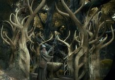 """The Elven Gate."", Gandalf murmured as he passed through an ancient archway into the forest. Thranduil, Legolas, I Love The World, Jrr Tolkien, Gandalf, One Ring, Middle Earth, Lord Of The Rings, Lotr"
