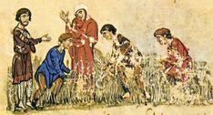 Θερισμός. Μικρογραφία σε βυζαντινό χειρόγραφο.