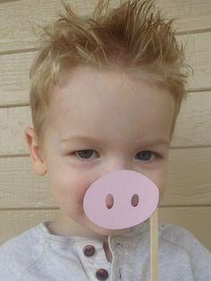 Nariz de cerdo en un palo conjunto de 12 por whimzycreations