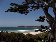 Carmel - California where my daughters were born xxooxx
