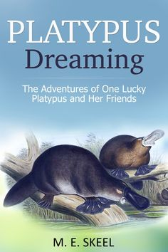 Enjoy a real life animal adventure story about one of the world's most mysterious animals yours for ‪#‎FREE‬ https://storyfinds.com/book/17493/platypus-dreaming
