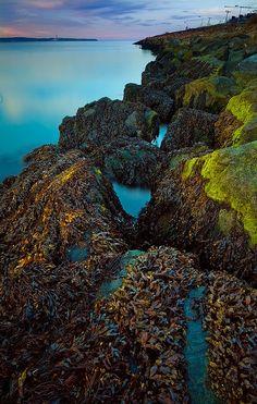 Holywood Rocks in Knocknagoney, Belfast, Ireland