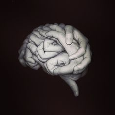 Our brains made from every loving touch, harsh fist, open palm.