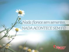 Nada floresce sem sementes, nada acontece sem fé!  #fe #amor