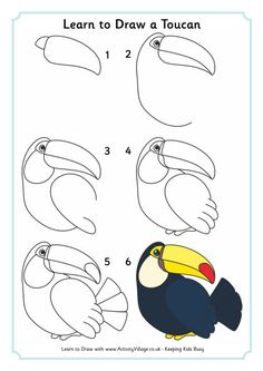 Learn to draw a toucan art drawings for kids, drawing for kids, easy drawings Drawing Tutorials For Kids, Art Drawings For Kids, Drawing Projects, Bird Drawings, Drawing Lessons, Drawing Techniques, Drawing For Kids, Animal Drawings, Easy Drawings