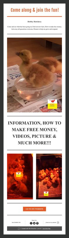 Hobby Hatchery Come and see what has been going on, Find out new facts, How to make free money, Ask away all queastions welcome, Donate to help me grow and exspand. Help Me Grow, Free Money, Join, Pictures, Photos, Grimm