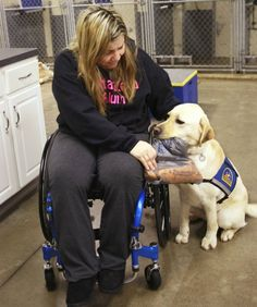 Snow-packed sidewalks, icy pavement, dirty slush and bitter cold all conspire to make it tough sledding for people who use wheelchairs in the suburbs. But women training this week hope to get through it all with a pull from their new companion dogs.