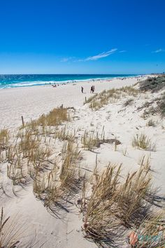 When you visit Perth in Western Australia spend some time at Scarborough Beach. Nice there!