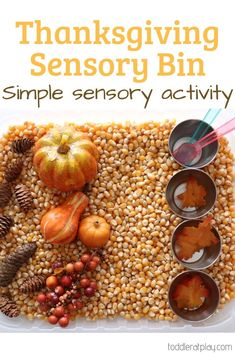 Super quick and easy sensory bin play idea for kids! #sensorybin #thanksgivingactivities #toddleractivities