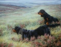 Basic Instinct Gordon Setter Print by Pippa Thew