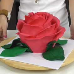 Giant Rose Cake Gorgeous rose cake that's almost too pretty to cut! The post Giant Rose Cake appeared first on Kuchen Rezepte. Cake Decorating Videos, Birthday Cake Decorating, Cake Decorating Techniques, Pretty Cakes, Beautiful Cakes, Amazing Cakes, Pretty Birthday Cakes, Cake Roses, Rose Cake