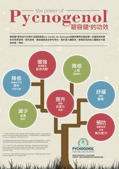 The Power of #Pycnogenol.  Market #HongKong
