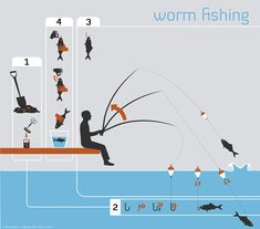 Worm Fishing Infographic on Behance