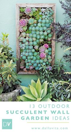 Vertical Gardens 13 Outdoor Vertical Succulent Gardens - Dalla Vita - Vertical succulent wall gardens come in a variety of shapes and sizes. Check out some of our favorite succulent wall garden ideas. Succulent Outdoor, Vertical Succulent Gardens, Vertical Garden Wall, Succulents Garden, Succulent Wall Diy, Vertical Planter, Garden Arbor, Diy Garden, Herb Garden