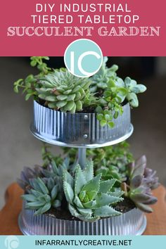 Succulents are probably the easiest plant to keep alive so for those of you who have a black thumb this succulent garden project is for you. I love the greenery paired with the industrial metal tubes and end caps used in this project. All these items can be found at any hardware store. Diy House Projects, Diy Wood Projects, Diy Craft Projects, Garden Projects, Succulent Gardening, Succulents Garden, Bright Flowers, Concrete Planters, Easy Diy Crafts