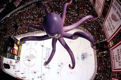 Great aerial view of Al the Octopus hanging from the rafters. Detroit Hockey, Detroit Sports, Hockey Teams, Detroit Tigers, Ice Hockey, Sports Teams, Detroit Red Wings Game, Red Wings Hockey, Northern Girls