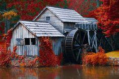 ༺♥༻ Beautiful Fall Scenery ༺♥༻