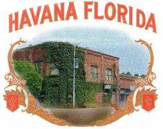 Havana, Florida