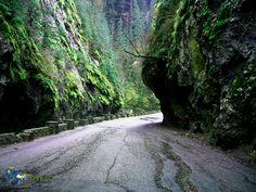 Romania - The mountain road sneaking through the Dâmbovicioara's Gorge Romania, Mountain, Country Roads, Mountaineering