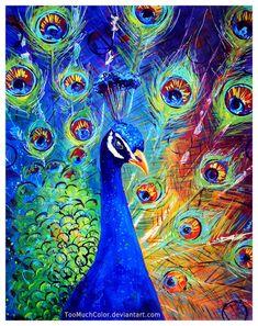 Peacock by TooMuchColor.deviantart.com on @DeviantArt