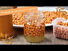 Cătină cu miere la borcan. Beneficiile consumului de cătină. Proprietățile cătinei. Cum se prepară corect mierea cu cătină. Beans, Canning, Vegetables, Recipes, Fine Dining, Recipies, Vegetable Recipes, Ripped Recipes, Home Canning