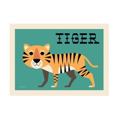 Curious Tiger poster for children's rooms, designed by Ingela P. Arrhenius for OMM Design and available at Bobby Rabbit.