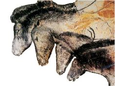 Przewalski horses are also painted on the walls of the Chauvet Cave in the Ardèche, one of the oldest in the world. Carbon dating of these paintings at 31,000 years old.