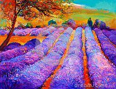 Boyan Dimitrov - Lavender fields