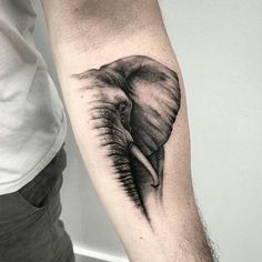 Elephant tattoo concept