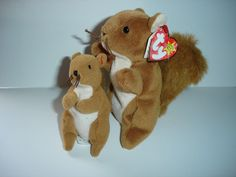 Nuts The Squirrel & Baby Beanie Babies Retired  Born 01-21-96 No Reserve