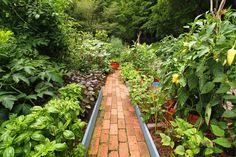 家庭菜園ポタジェ