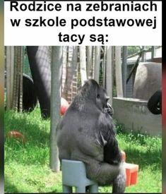 Polish Memes, Death Note, Lol, Humor, Humour, Funny Photos, Funny Humor, Comedy, Lifting Humor