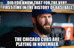 World Series Winners, World Series 2016, Cubs World Series, Cubs Team, Cubs Win, Go Cubs Go, Chicago Cubs Baseball, Wrigley Field