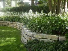 Single use of flowers for greater impact - love the stone wall!