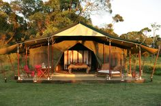 In I slept in a tent like this on Masai Mara, Kenya, for a Safari. Best Family Camping Tents, Camping Glamping, Luxury Camping, Family Tent, Camping Hammock, Westminster, Cabana, Outdoor Life, Outdoor Living