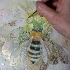 Secret life of bees Illustrations, Illustration Art, Gold Leaf Art, Bee Art, Insect Art, Botanical Art, Art Techniques, Watercolor Paintings, Watercolors