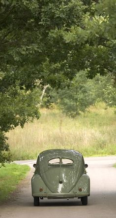 "A ""cousin"" to the 356A ... this 1950 VW with the split rear windows is out for a day in the village!"